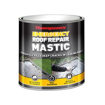 Ronseal Thompson's Emergency Roof Repair Mastic 750ml - RSLTERRM750