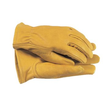 Town & Country Premium Leather Gloves Ladies' - Small - T/CTGL105S
